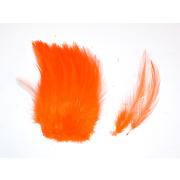 Förg Indische Sattelhecheln Orange