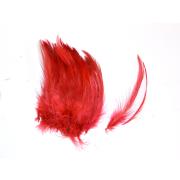 Förg Indische Sattelhecheln Rot
