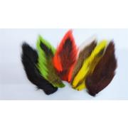 Northern Bucktail