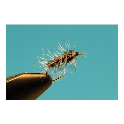 Caterpillar #12