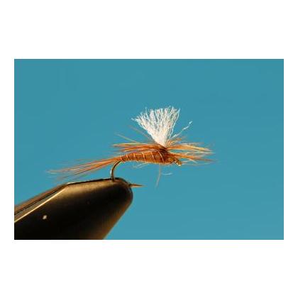 BWO Parachute #16