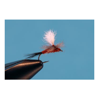 Parachute Rusty #12