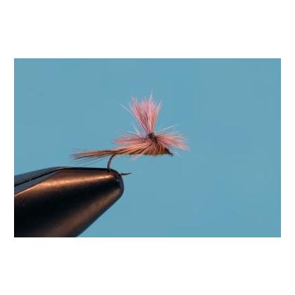 Parachute BWO #18