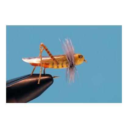 Flying Hopper Orange Tail #10